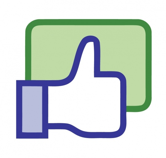 FB Like Icon